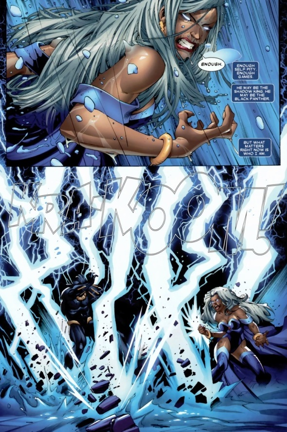 StormBlackPanther13